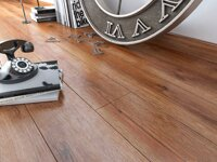 D 3787 Baltic Oak